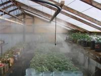 Орошение туманом